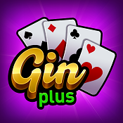 Gin Rummy Plus Support